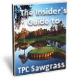 Get This Free Guide